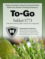 Sukkot To-Go 5773