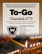 Chanuka To-Go 5773